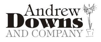 AndrewDowns
